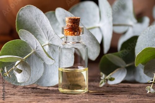 Valokuva  A bottle of essential oil with fresh eucalyptus leaves