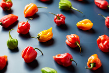 Small Colorful Peppers On Black Background.