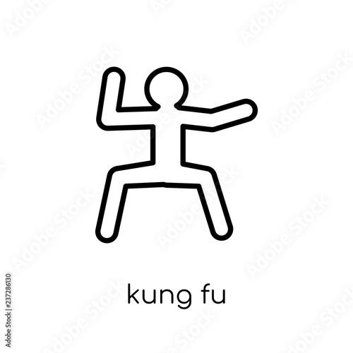 Fotografie, Obraz  kung fu icon