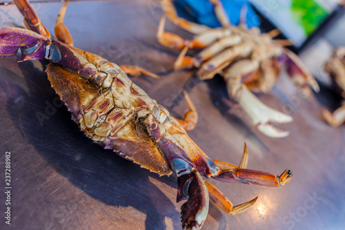 Fresh Crab on restaurant kitchen top