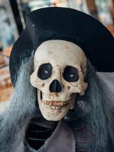 Halloween Skeleton Decoration