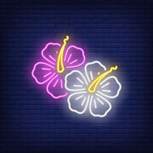 Hibiscus Flowers Neon Sign. Su...