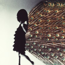 Conceptual Unrecognisable Woman With Peacock Feathers - Pea[hen]