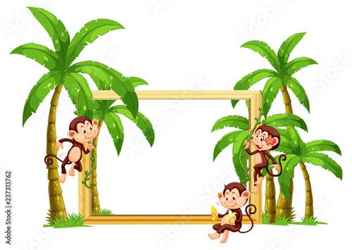 Staande foto Kids Monkey on wooden frame