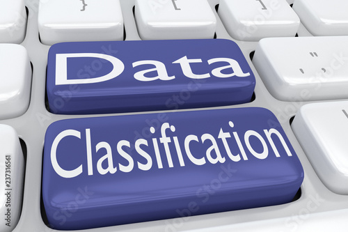 Photo Data Classification concept