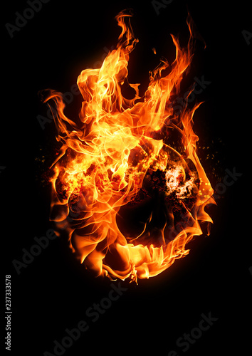Fotografia, Obraz  火の玉