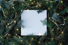 Creative Layout Made Of Christmas Tree Branches With Paper Card Note And Christmas Lights. Flat Lay. Nature New Year Concept.