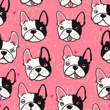 Cute French Bulldog. Dog Faces...