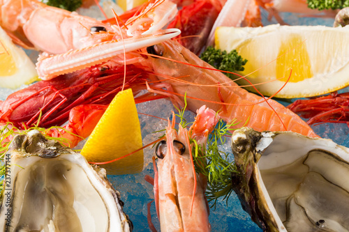 Fotografie, Obraz  Pink prawns served with fresh oysters on ice