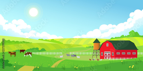 Poster Turquoise Colorful farm summer landscape, blue clear sky with sun, red barn, herd of cows, agriculture, flat style vector illustration