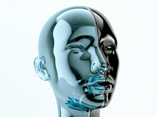 Glass Human Head Separated By Line As Symbol Of Balance And Diversity