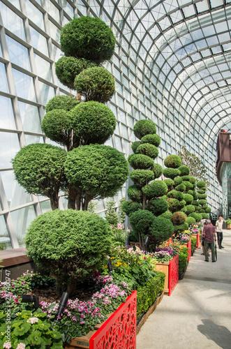 Printed kitchen splashbacks Garden Cloud Forest à Singapour