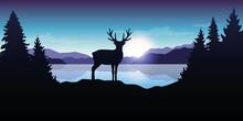Reindeer By The Lake At Sunrise Blue Wildlife Nature Landscape Vector Illustration EPS10