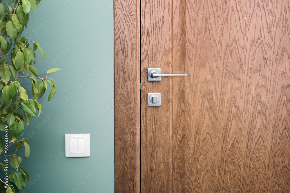 Fototapety, obrazy: Close - up elements of the interior of a beautiful apartment. Steel door handle and dark wood