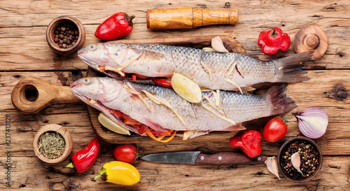 Fresh uncooked fish