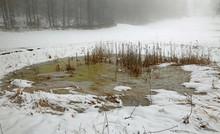 Frozen Pond In Winter With White Snow