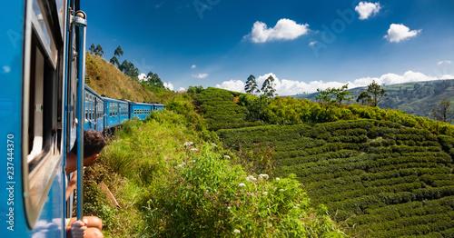 Obraz na plátně train from Nuwara Eliya to Kandy among tea plantations in the highlands of Sri L
