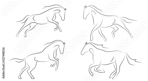 Photographie Black line horse on white background