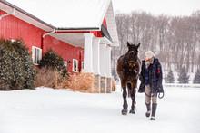 Woman Walking Horse In Winter