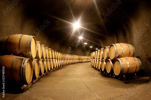 pile of wine barrels in a wine cellar Wallpaper Mural