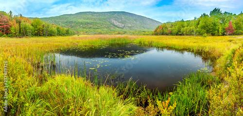 Fotografija  Beaver Dam pond along park loop road in Acadia National Park, Maine