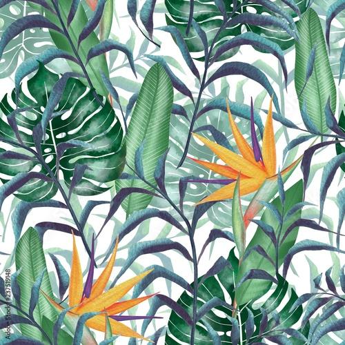rosliny-tropikalne-kwiat-sterlitzia-akwarela-styl-kwiatowy-wzor-wimn