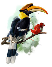 The Hornbill Sitting On A Branch