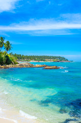 Tropical beach background with palm trees