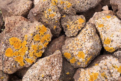 Big brown stones with yellow lichen as background