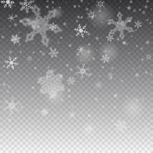 Vector Snowfall, Snowflakes Of Various Shapes. Many White Cold Flaky Elements On Transparent Background. White Falling Fly In The Air.