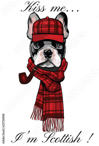 Spoed Foto op Canvas Art Studio French buldog with a scottish cap and a pipe