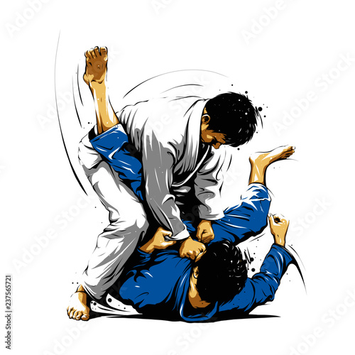 Brazilian Jiu-Jitsu action 2 Wallpaper Mural