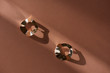Leinwanddruck Bild - top view of beautiful luxury golden earrings on brown surface with sunlight