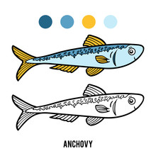 Coloring Book, Anchovy