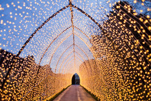 Tunnel Formed By Christmas Lig...