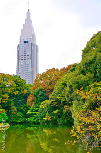 Foto op Plexiglas Aziatische Plekken View of the beautiful garden with colorful trees in autumn at Shinjuku Gyoen Garden in Tokyo, Japan.