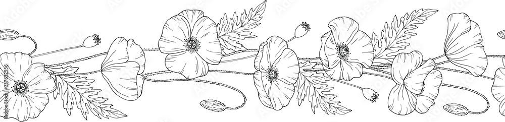 Fototapety, obrazy: Seamless brush. Seamless border. Poppy flowers. Papáver. Stems and leaves. Hand drawn vector illustration. Monochrome black and white ink sketch. Line art.