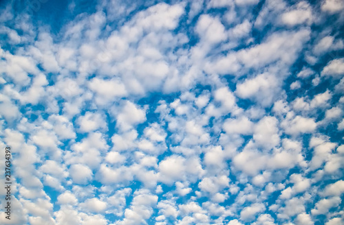 Altocumulus clouds at sunny day. cloudscape Canvas Print