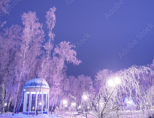 Aluminium Prints Amazing winter landscape in evening park. Gazebo, lantern lights, snow and frosty trees. Artistic picture. Beauty world.