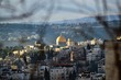 Dome of rocks between trees, Temple Mount of Jerusalem