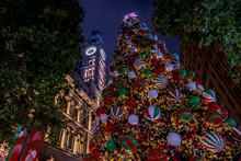 Chritmas Tree In Sydney's Martin Place Very Early In The Morning