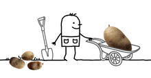 Cartoon Man In Garden And Big Potato In Wheelbarrow
