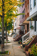 Fall color and row houses in Remington, Baltimore, Maryland