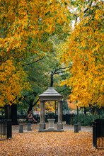Autumn Color At Tompkins Square Park, In The East Village, New York City