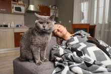 Young Woman Sleeping With Her Cat, Cat Is Waiting When Girl Wake Up, Cat Is Sitting Near Sleeping Girl