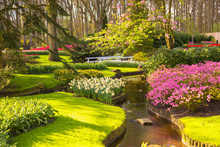 Spring Blooming Sunny Park. Spring Beautiful Background.