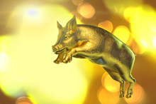 A New Year Gold Pig 3D Render