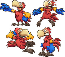 Cartoon Red Macaw In Different...