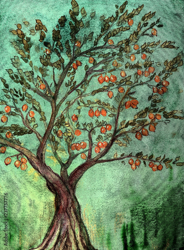 Valokuva Rustic fruit tree with oranges and green background