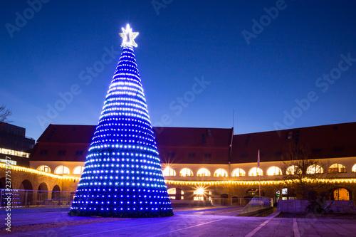 Fotografía  The Christmas tree